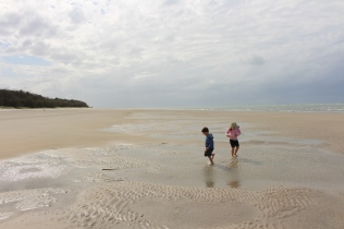 The kids had fun playing in the pools of water left by the receding tide.